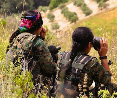 kurdish ypj